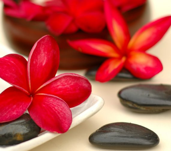 hot stones red exotic flowers